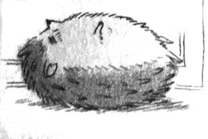 Momomomotto! by Nakajō Hisaya (Hana to Yume Comics, Hakusensha)